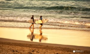 The Weekly Frame – Surfer's Paradise